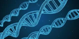 genoma blockchain