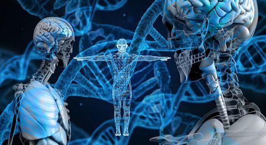 eprocessmed dlt tecnologia sanitaria 1