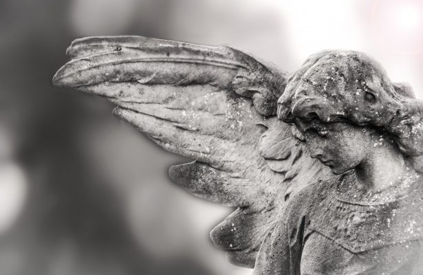 sexo angeles naturaleza criptodivisas 2